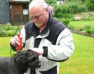 Hundefriseur Torsten Grafenhain beim Frisieren