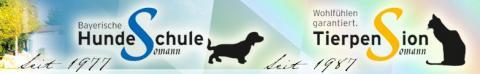 Die richtige Erziehung – Hundeschule Somann in Thalmässing in Thalmässing