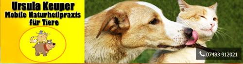 Firmenprofil von: Mobile Tierheilpraxis in Tübingen: Tierheilpraktikerin Ursula Keuper